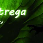 Malastrega2017_Web